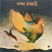 Редкие птицы, или что слушают на горизонте