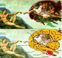 Сотворение Адама и Летающий Мозг